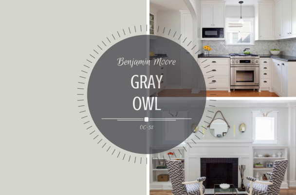 Color spotlight benjamin moore gray owl rowe spurling for Gray owl benjamin moore