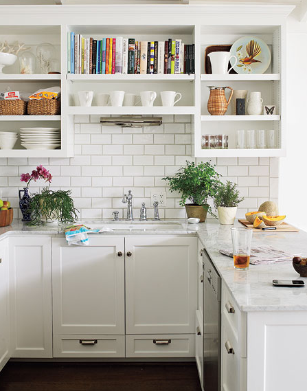 kitchen cabinet alternatives.  a small kitchen feel more spacious is to remove few cabinet doors It s great way show off colourful cookware just make sure keep it tidy Kitchen Cabinet Alternatives ROWE SPURLING PAINT COMPANY